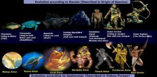 Dashavatara & Darwin's Evolution Theory