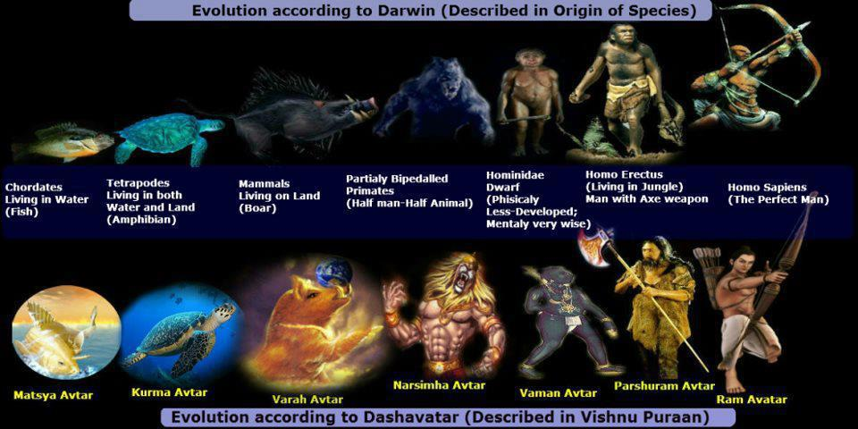evolution of life as dasavatharam Evolutionary theory & the incarnations of vishnu ~ steven j rosen the evolution of life forms one into the other when the earth's environment permitted that.