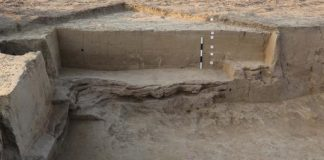 Remnants Of Harappan Period House Found In Uttar Pradesh