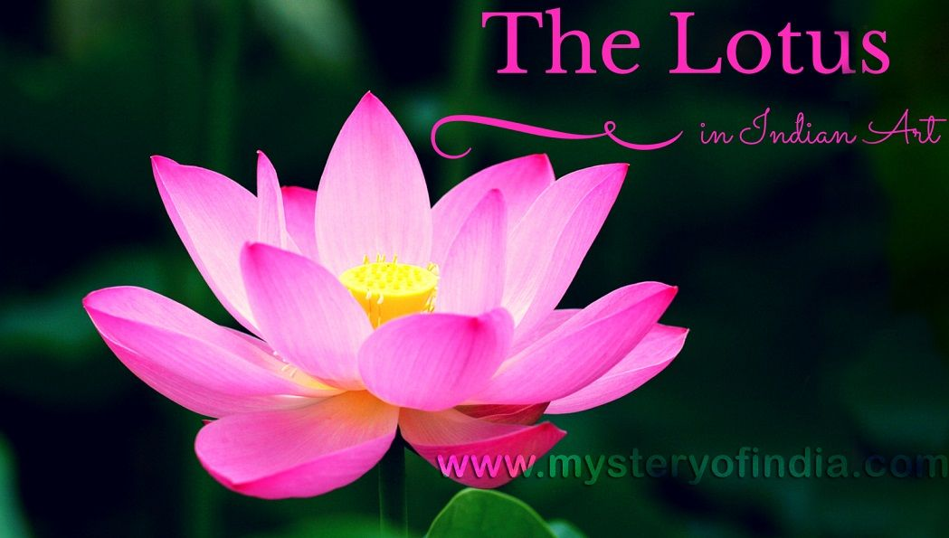 The Lotus In Indian Art Mystery Of India