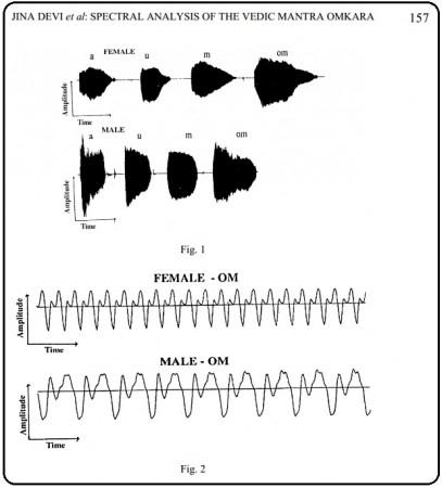 OM Waveforms