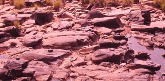 Countless Rock Carved Shiva Lingas of Sahasralinga